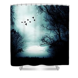 The Skies Hold Many Secrets Known Only To A Few Shower Curtain