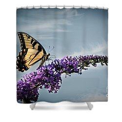 The Sky Is The Limit Shower Curtain by Judy Wolinsky