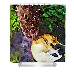 The Sleeping Cat And The Dead Tree Fern Shower Curtain