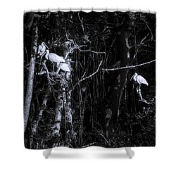 The Sleeping Quaters Shower Curtain