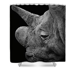 The Sleepy Rhino Shower Curtain
