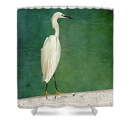 The Small White Heron - Snowy Egret Shower Curtain