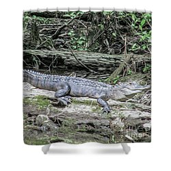 The Smiling Gator Shower Curtain