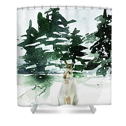 Shower Curtain featuring the painting The Snow Bunny by Colleen Taylor