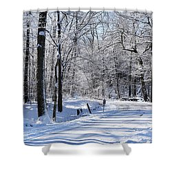 The Snowy Road 1 Shower Curtain
