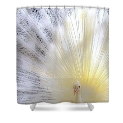 The Softer Side Of White Shower Curtain