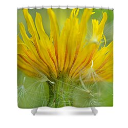 The Sow And Silk Shower Curtain