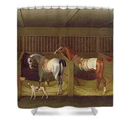 The Stables And Two Famous Running Horses Belonging To His Grace - The Duke Of Bolton Shower Curtain by James Seymour