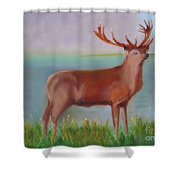 The Stag Shower Curtain by Rod Jellison