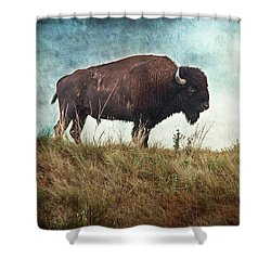 The Stance Shower Curtain by Tamyra Ayles