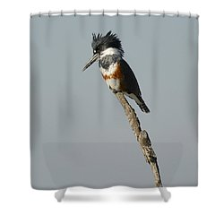 The Stand Shower Curtain by Fraida Gutovich