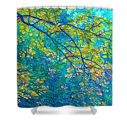 The Star Of The Forest - 773 Shower Curtain