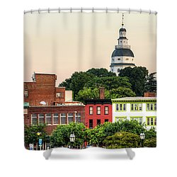 The State Capitol Shower Curtain