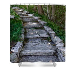The Steps Shower Curtain by David Blank