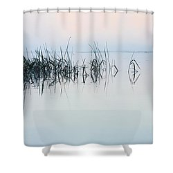 The Stillness Of Life Shower Curtain by Shelby  Young