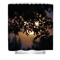 The Strawberry Moon Shower Curtain by Judy Johnson