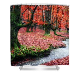 The Stream Of Life Shower Curtain