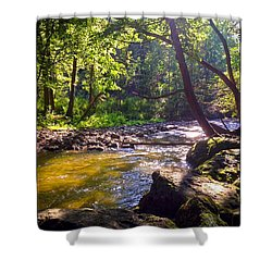The Stream Shower Curtain