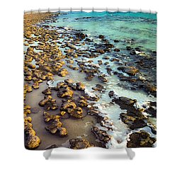 Shower Curtain featuring the photograph The Stromatolite Family Enjoying Its 1277500000000th Sunset by T Brian Jones