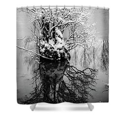 The Stump Shower Curtain