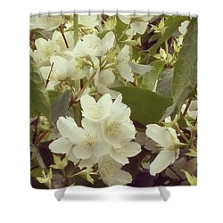 The Summer Smells Like A Mock Orange Shower Curtain by Arletta Cwalina