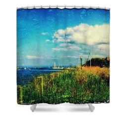 The Summer Wind Iv Shower Curtain by Aurelio Zucco