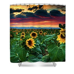 The Summer Winds Shower Curtain