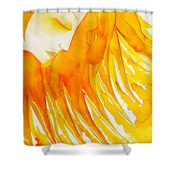 The Sun Goddess Shower Curtain by Jean Fry