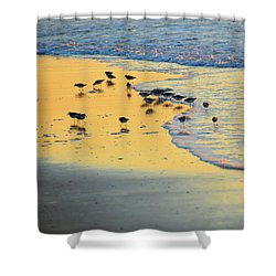 The Sun Is Shining And So Are You Shower Curtain