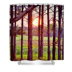 Shower Curtain featuring the photograph The Sun Pines Away by Jan Amiss Photography