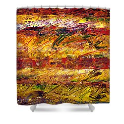 The Sun Rose One Step At A Time Shower Curtain by Wayne Potrafka