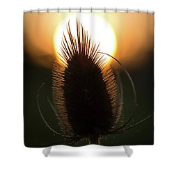 Shower Curtain featuring the photograph The Sun Sets Upon Summer by Dale Kincaid