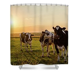 Shower Curtain featuring the photograph The Sunset Graze by Joel Witmeyer