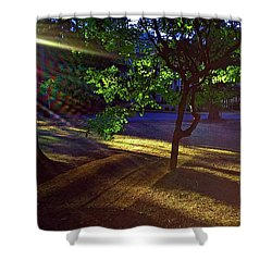 The Sunset Grove  Shower Curtain