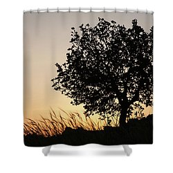 Sunset On The Hill Shower Curtain by Yoel Koskas