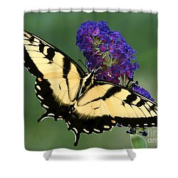 The Swallowtail Shower Curtain