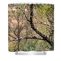 Shower Curtain featuring the photograph The Swarm by Donna Kennedy