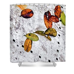 The Table Top Shower Curtain