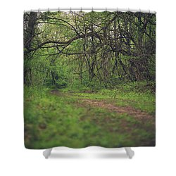 Shower Curtain featuring the photograph The Taking Tree by Shane Holsclaw