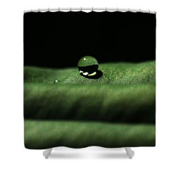 The Tao Of Raindrop Shower Curtain