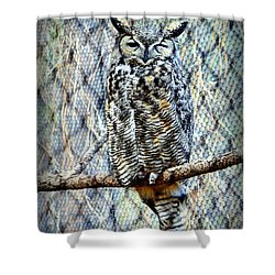 Shower Curtain featuring the photograph The Textured Owl by AJ Schibig