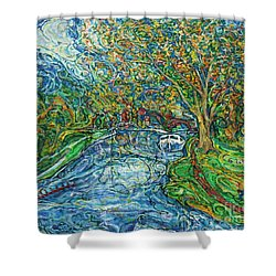 The Thames At Oxford Shower Curtain