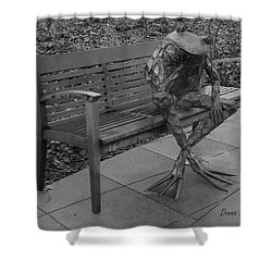 The Thinking Frog Shower Curtain by Donna Brown