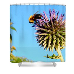 The Thistle And The Bee. Shower Curtain