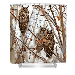 The Three Wise Men Shower Curtain