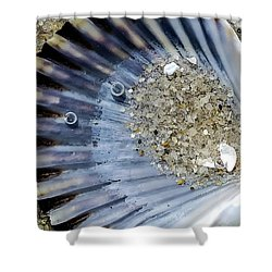 Shower Curtain featuring the photograph The Tides Edge by Bruce Carpenter