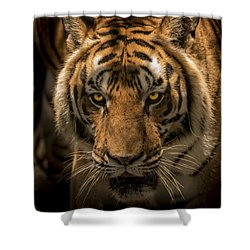 The Savage Found Me Shower Curtain