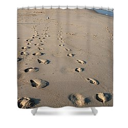 The Trails Of Footprints - Jersey Shore Shower Curtain