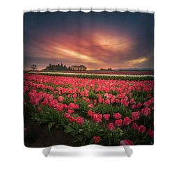 Shower Curtain featuring the photograph The Tranquil Morning Before Sunrise by William Lee