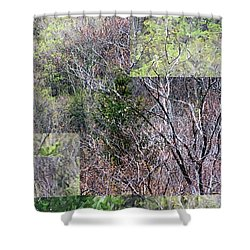 The Transition - Shower Curtain